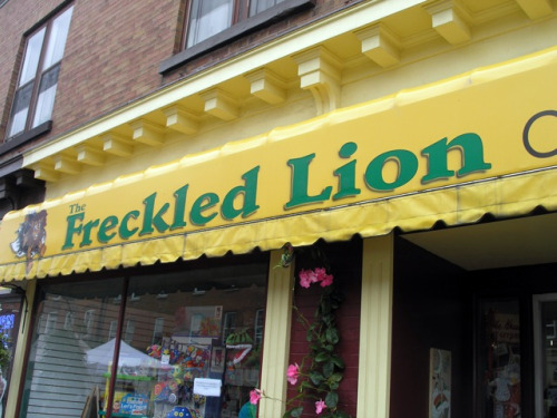 The Freckled Lion
